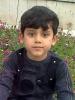محمد مهدی آقامحمدی