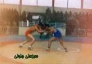 شهید سبز علی جلولی