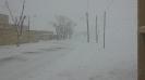 میلاجرد در یک روز برفی زمستان 89