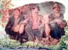 نشسته از راست مرحوم اوست عبدالله کرمی ، مرحوم محمد اتابکی (شُنبل) ، عباس کلبه فرج