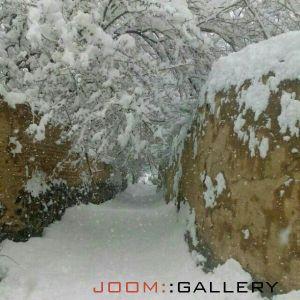کوچه باغهای میلاجرد در یک روز برفی
